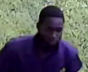 Gun taken in Harvey vehicle burglary; JPSO seeking suspect