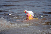 Too chicken for the Lehigh Valley Polar Plunge? Not these folks