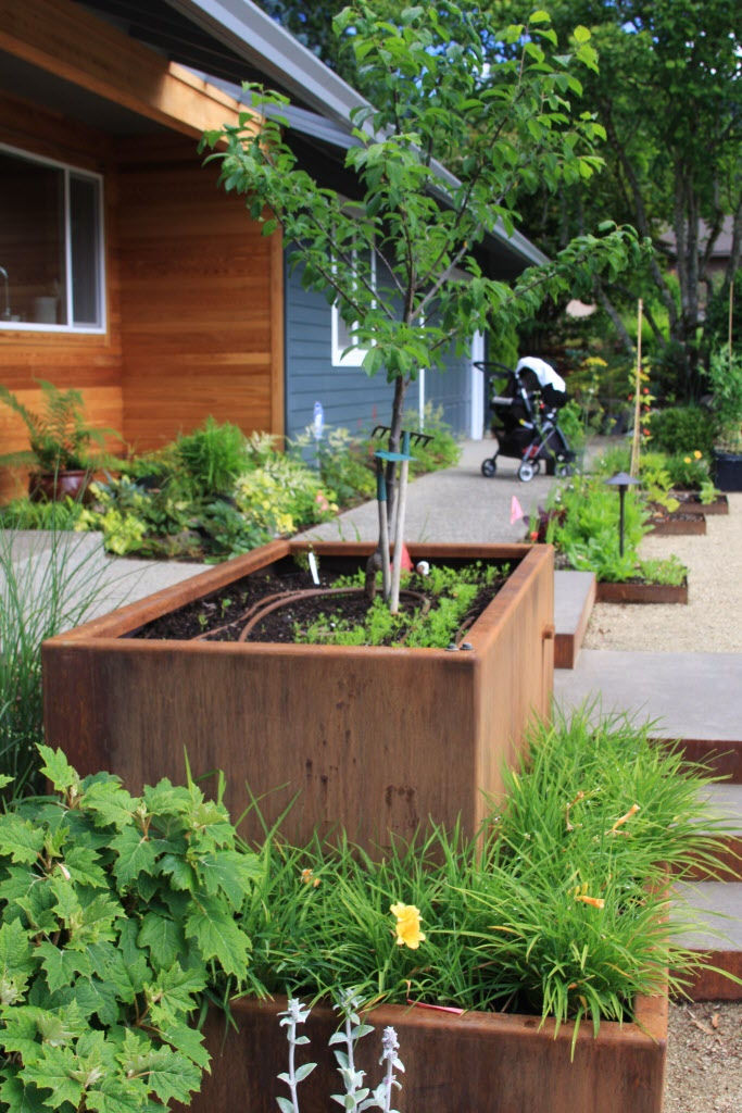 An Ignored Front Yard Is Now A Stunning, Low Maintenance Garden (before And  After Photos) | OregonLive.com