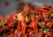 From crawfish to concerts: 12 fun things to do in St. Tammany Parish this weekend (April 20-22)
