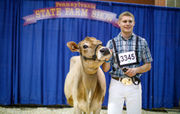 Pa. Farm Show 2018: scenes from day 7 of the 102nd Farm Show