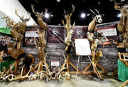 11 cool things to see at the 2018 World Deer Expo