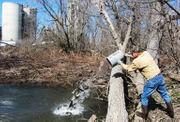 WATCH: Rite of spring (really), as Monocacy is stocked with trout