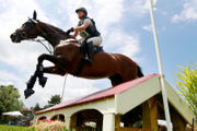 Jumps, splashes and distance: Watch as horses compete to raise money for charity