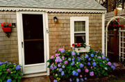 House of the Week: Cape Cod cottage on the market for under $100,000