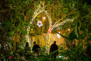 Meijer Gardens 'Christmas and Holiday Traditions Around the World' preview