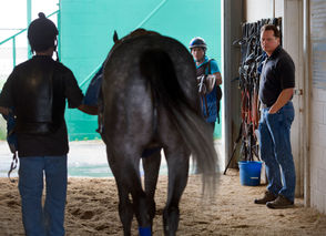 The New Orleans native is an 11-time winner of the Fair Grounds training title. He leads one of the top claiming outfits in the nation and is the trainer for top 2-year-old filly Serengeti Empress, Lone Sailor, the top 3-year-old for GMB Racing and Saints-Pelicans owner Gayle Benson, and Drinking Dixie, one of GMB's top 2-year-old colts.