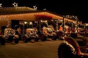 51 Free things to do this weekend, Nov. 30-Dec. 2, including tree lightings