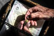 Pot activist calls Ann Arbor's limit on dispensaries 'pure reefer madness'