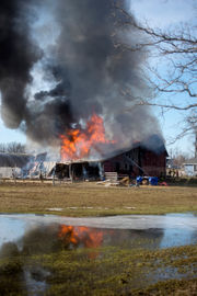 Three goats die in fire that destroys barn north of Jackson
