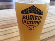 Syracuse's newest brewery, Buried Acorn, emerges this week near the Inner Harbor