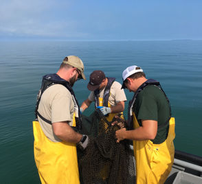 The Michigan Department of Natural Resources travels along the Saginaw Bay for two weeks to survey the fish population.