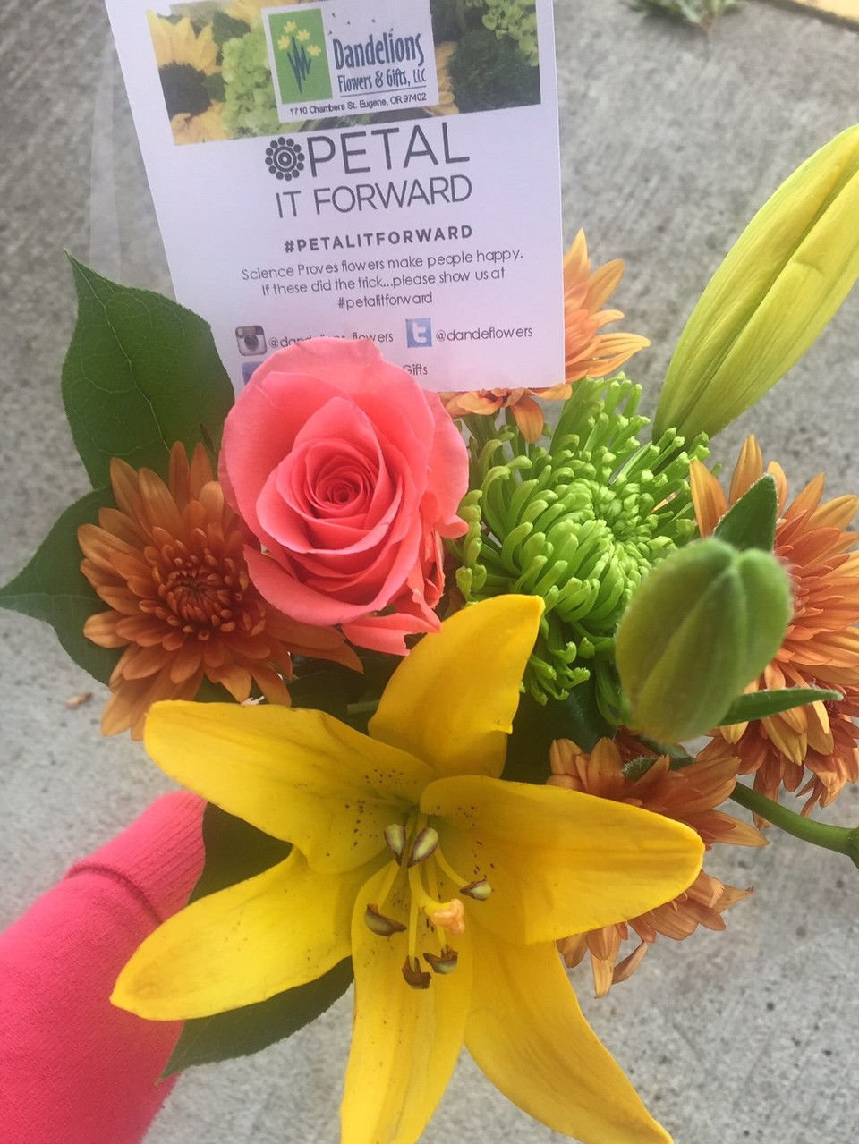 How to get, give free flowers today to 'Petal It Forward
