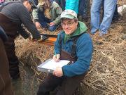 Rite of spring: DEC electroshocks trout on Finger Lake tributary (video)