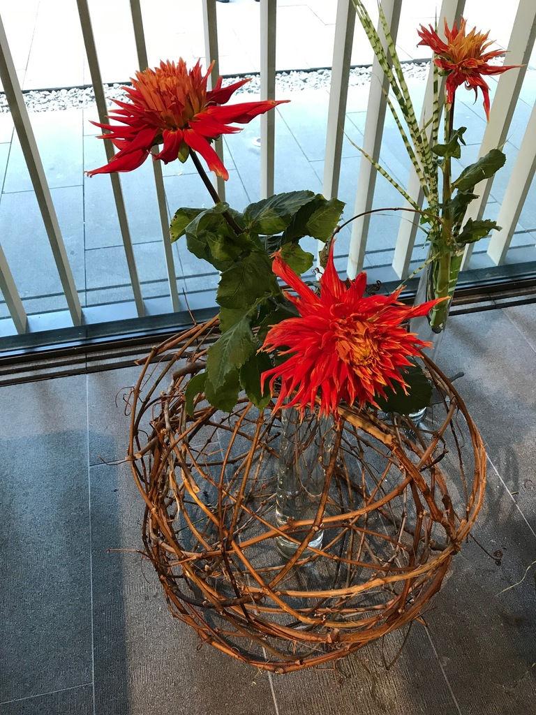 Portland Japanese Garden Displays Inspiring Ikebana Flower