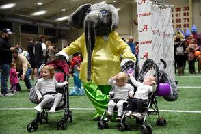Big Al makes a solid babysitter.