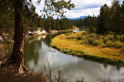 A desert river defines quiet, lovely LaPine State Park