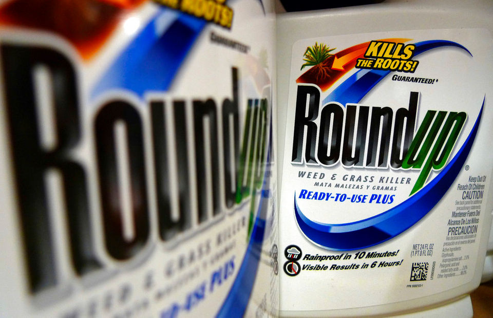 Monsanto ordered to pay $289 million in Roundup weed killer cancer case | NOLA River