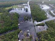 Hurricane Florence flooding kills millions of chickens, hogs