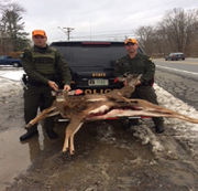 DEC rescues deer on frozen pond in between ticketing illegal hunters