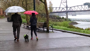 In the meantime, Portlanders should expect a Friday high near 44 degrees and up to a quarter-inch of rain. Saturday will bring a similar high, chance of showers before 4 p.m. and chance of rain afterward. Less than a tenth of an inch of rain could fall. -- Jim Ryan; jryan@oregonian.com; 503-221-8005; @Jimryan015 Visit subscription.oregonlive.com/newsletters to get Oregonian/OregonLive journalism delivered to your email inbox.