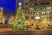 21 free things to do this weekend, Nov. 23-25, in central Pa., including tree lightings