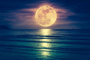 The November 2018 full moon is coming on Black Friday