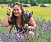 NY Lavender Festival: you can almost smell it (photos)