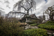 Shofuso Japanese House and Garden is a hidden gem of Philadelphia: Cool Spaces
