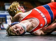 See photos from 2018 Division 1 Michigan team wrestling quarterfinals