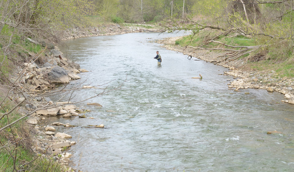 Onondaga County faces $500 million sewer bill to save creeks