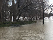 Residents and visitors react to Grand River flood waters in downtown GR