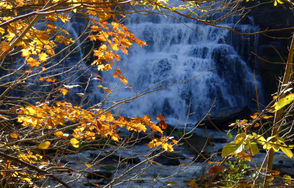 Picture yourself standing in front of a massive 167-foot waterfall surrounded by the vibrant colors of red, orange and yellow. That's the scene at Chittenango Falls, a beautiful state park just outside Syracuse. More info
