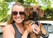 Amazing dogs and owners we saw at Do Dah Day 2018