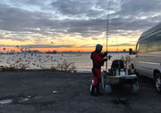 Can you eat the seafood fished off of Staten Island shores?