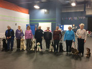 Cute canines practice their moves for K9 bullet-proof vest fundraiser