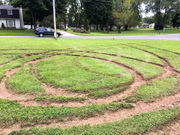 'Joy riding' vandal heavily damages Bayberry church lawn