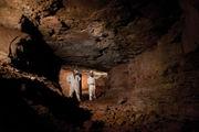 Ruffner Mountain seeks to protect native bat population