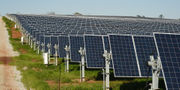 St. Patrick's Day treats, Alabama's biggest solar farm, aviation center in today's business news