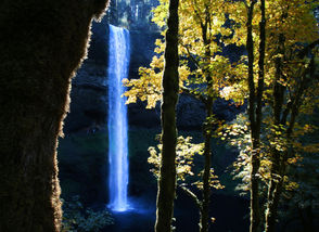 """South Falls plummets at Silver Falls State Park, framed by fall foliage. It's become an ongoing tradition in the Pacific Northwest, and one us nature lovers can get behind: Instead of packing stores on Black Friday – battling crowds for deals on new things – get outside and treat yourself some of that good, old-fashioned fresh air.   Thankfully the Oregon and Washington state parks departments agree. Both will once again waive all day use fees at state parks the day after Thanksgiving, in an event they have dubbed """"Green Friday"""" and """"Autumn Day,"""" respectively."""