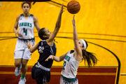 Michigan girls basketball Associated Press polls – Feb. 19, 2019