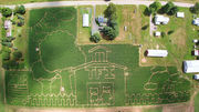 Corn mazes in Upstate NY 2018: 26 fun fields to get lost in this fall (photos)