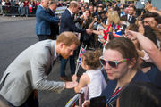 Princes Harry, William chat with Royal Wedding fans ahead of tomorrow's ceremony (photos)