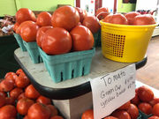 The Slocomb tomato: Is it a matter of the soil or a matter of the soul?