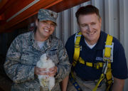 Concerned about potential for plane strikes, Westover Air Reserve Base removes peregrine falcon chicks