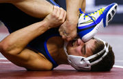 Best of the 2018 PIAA wrestling championships (PHOTOS)